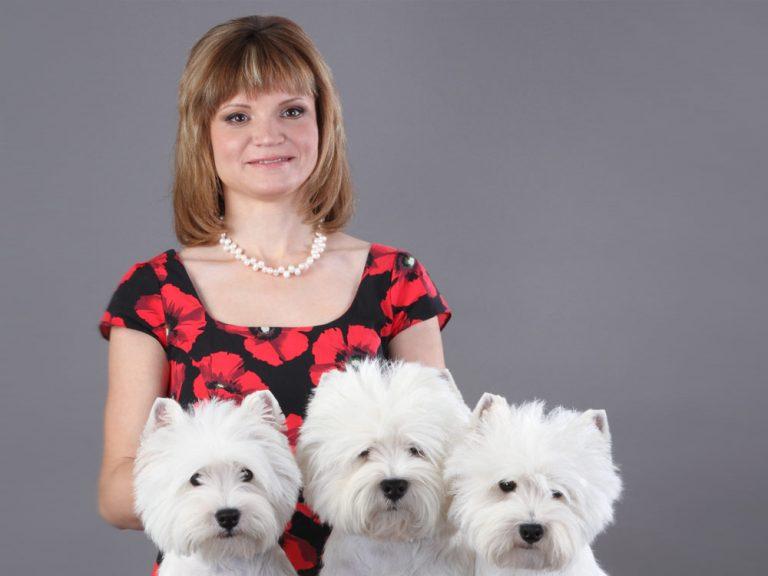 Менеджмент шоу-собаки