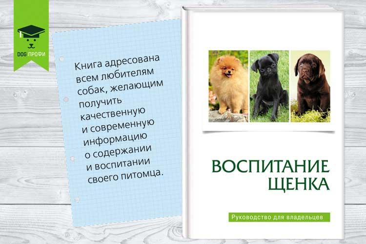 НОВИНКА ОТ «DOG-ПРОФИ»