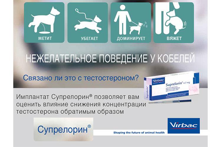 Новинка от компании «Ветпром»