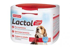 Lactol - молоко для котят и щенков