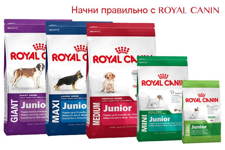 Новинка от компании ROYAL CANIN®