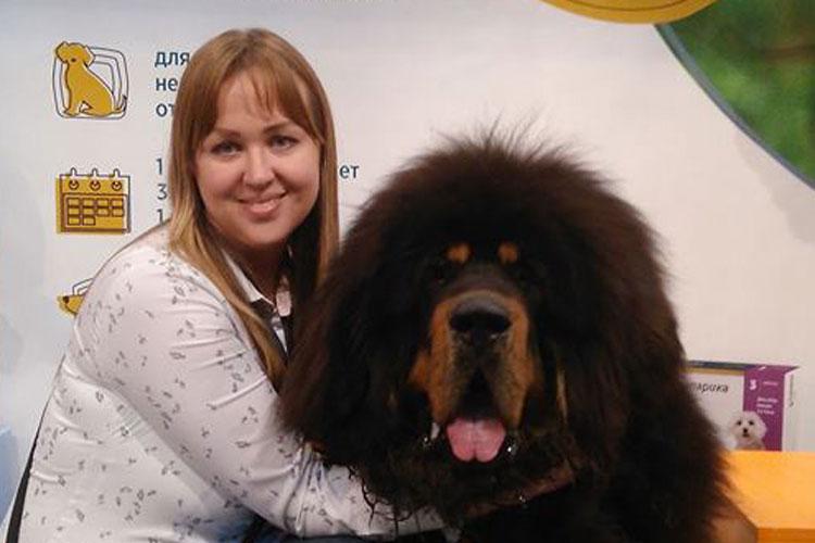 Зуд у собак. Возможные причины и методы лечения