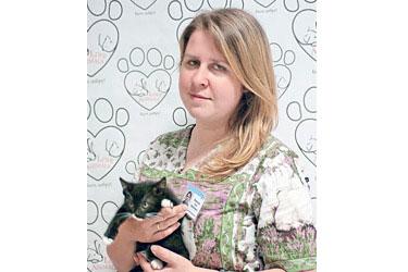 Хронические неизлечимые инфекции кошек. Диагностика и профилактика