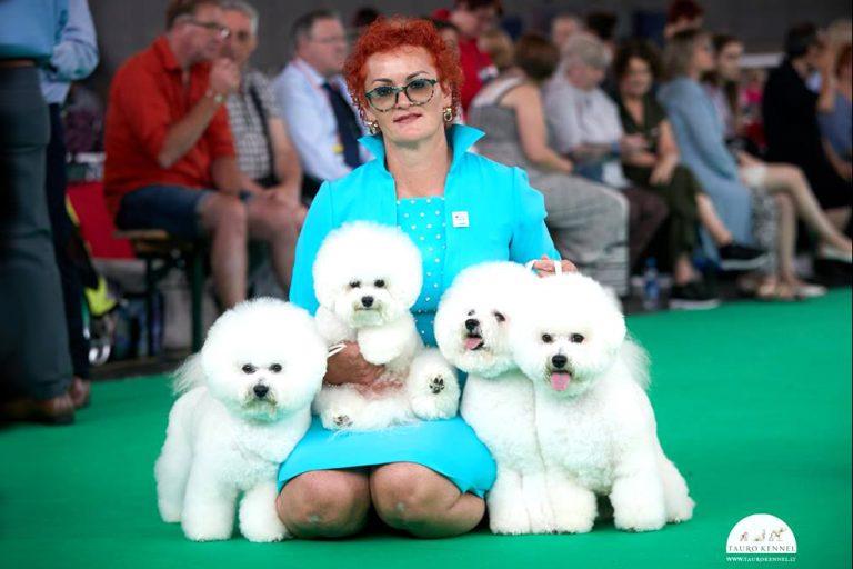 Идеально белая собака – невозможное возможно