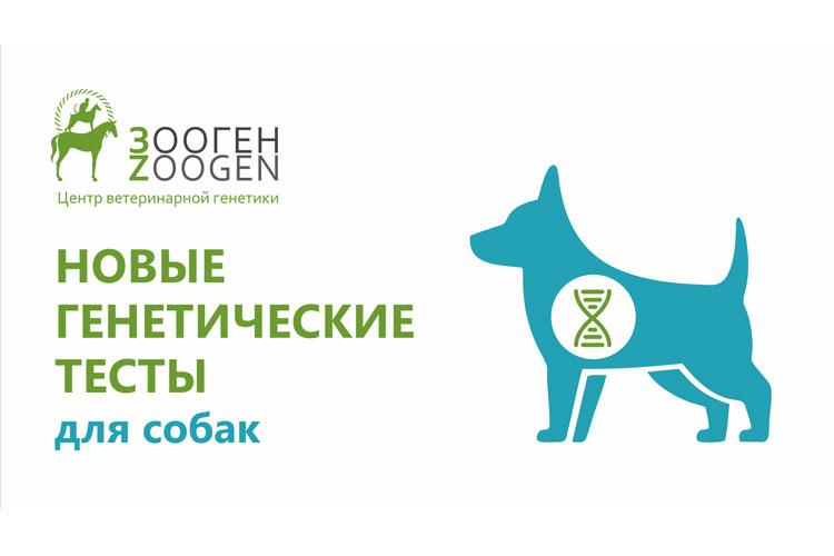 Новые генетические тесты на Прогрессирующую атрофию сетчатки от ЗООГЕН